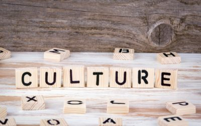 What is Workplace Culture?